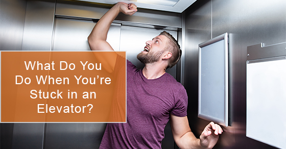 When You're Stuck in an Elevator, What Do You Do?